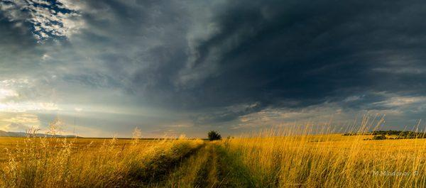 "Today's Photo Of The Day is ""Alone In The Field"" by Milen Mladenov. Location: Varbovchets, Bulgaria."