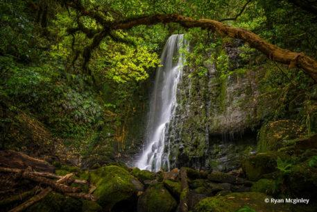 "Today's Photo Of The Day is ""Matai Falls"" Ryan Mcginley. Location: Catlins Forest Park, South Island of New Zealand."
