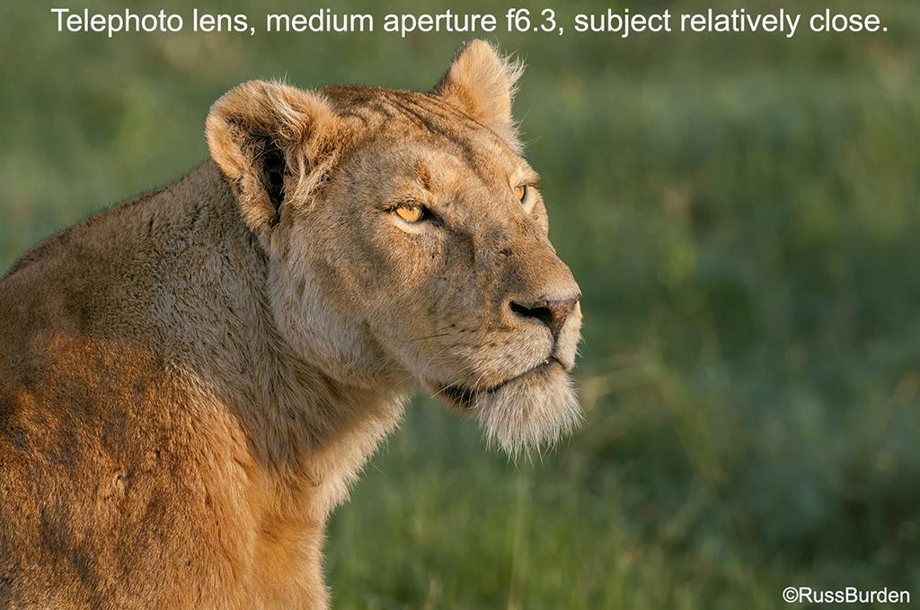 Aperture 101 Primer And Overview