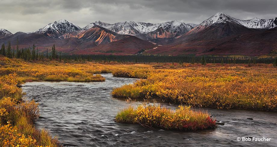 """Today's Photo Of The Day is """"Stickwan Creek"""" by Bob Faucher. Location: Denali Wilderness, Alaska."""