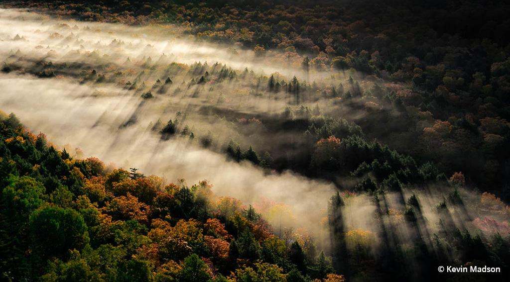 """Today's Photo Of The Day is """"Sunlight in the Porkies"""" by Kevin Madson. Location: Porcupine Mountains Wilderness State Park, Michigan."""