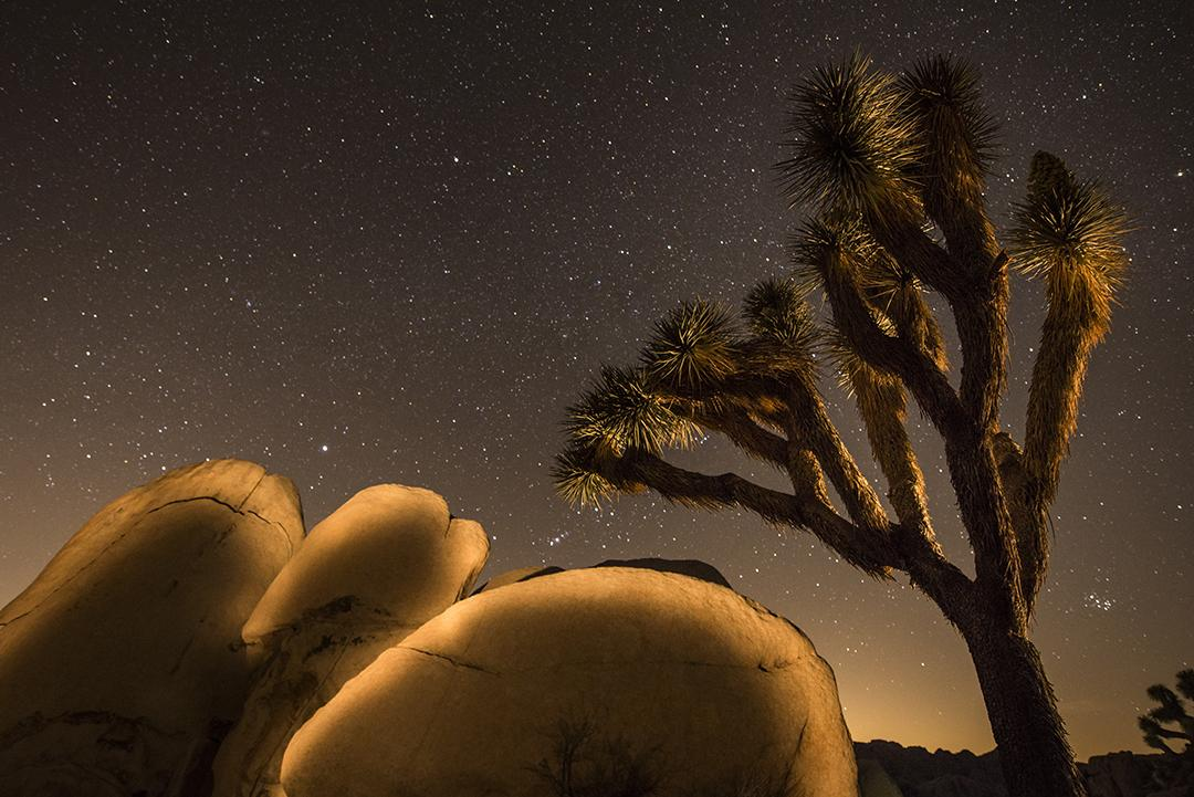 A nighttime scenic at Hidden Valley in Joshua Tree National Park, taken at the annual Bradley Photographic Joshua Tree Workshop.
