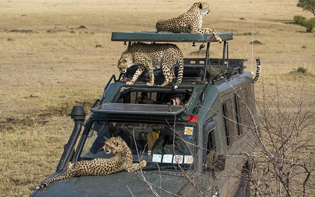 Exposure Tours—Africa in the RAW