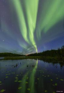 "Today's Photo Of The Day is ""The Big Dipper"" by Dean Cobin. Location: Northwest Territories, Yellowknife, Canada."