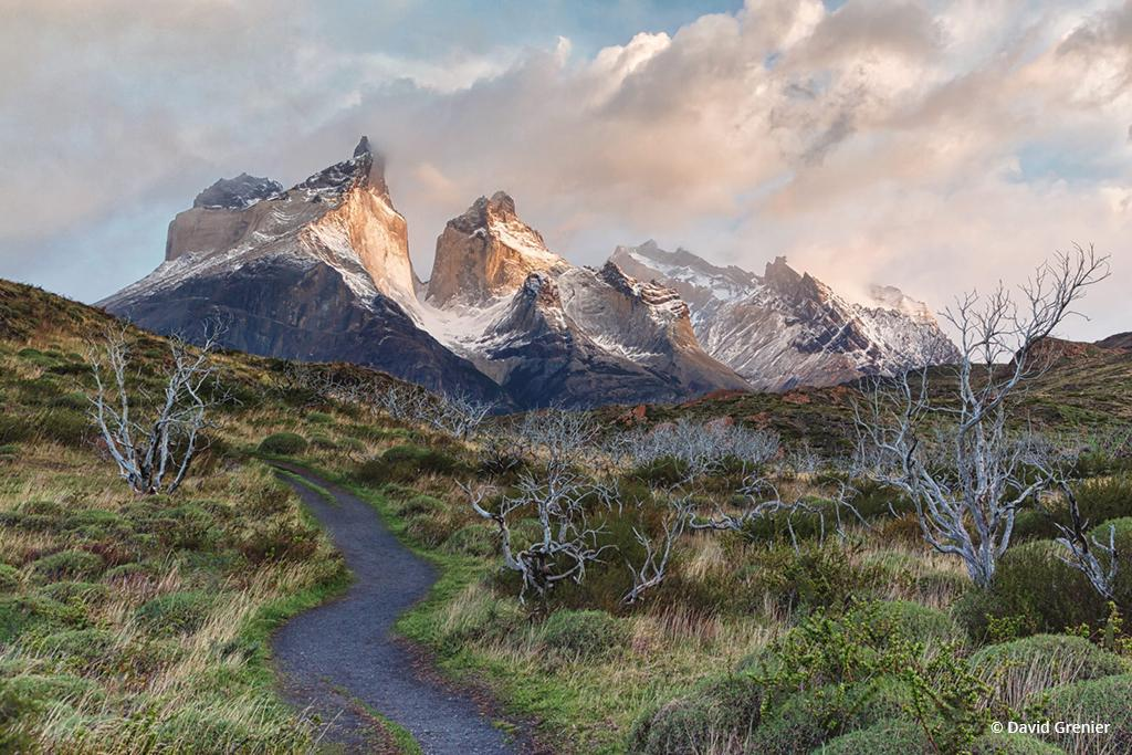 """Today's Photo Of The Day is """"Patagonia Morning Light"""" by David Grenier. Location: Torres del Paine National Park, Chile."""