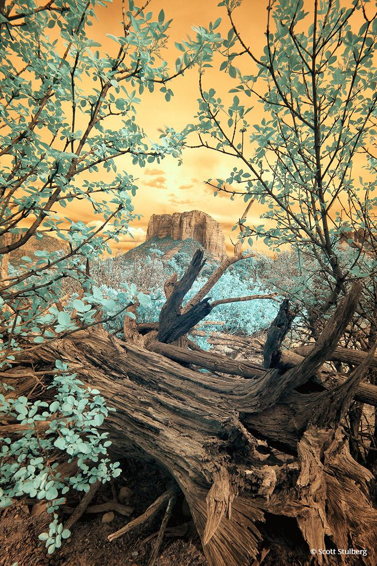 """Today's Photo Of The Day is """"Surreal Sedona"""" by Scott Stulberg. Location: Courthouse Butte, Sedona, Arizona."""