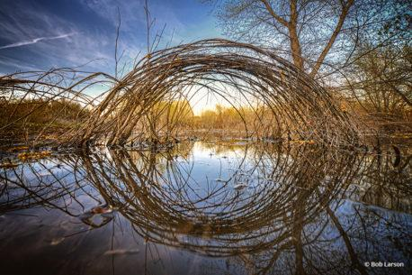 """Congratulations to Bob Larson for winning the recent Fresh Perspective Assignment with his image """"Eyeing Nature."""""""