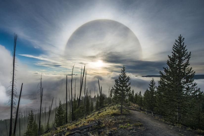 Halo over Grand Prismatic Springs