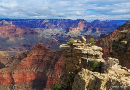 "Today's Photo Of The Day is ""Exciting view from South Rim"" by Dmitrii Petrakov. Location: Grand Canyon National Park, Arizona."