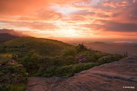 "Today's Photo Of The Day is ""Evening Bliss"" by Kevin King. Location: Roan Mountain, Tennessee."