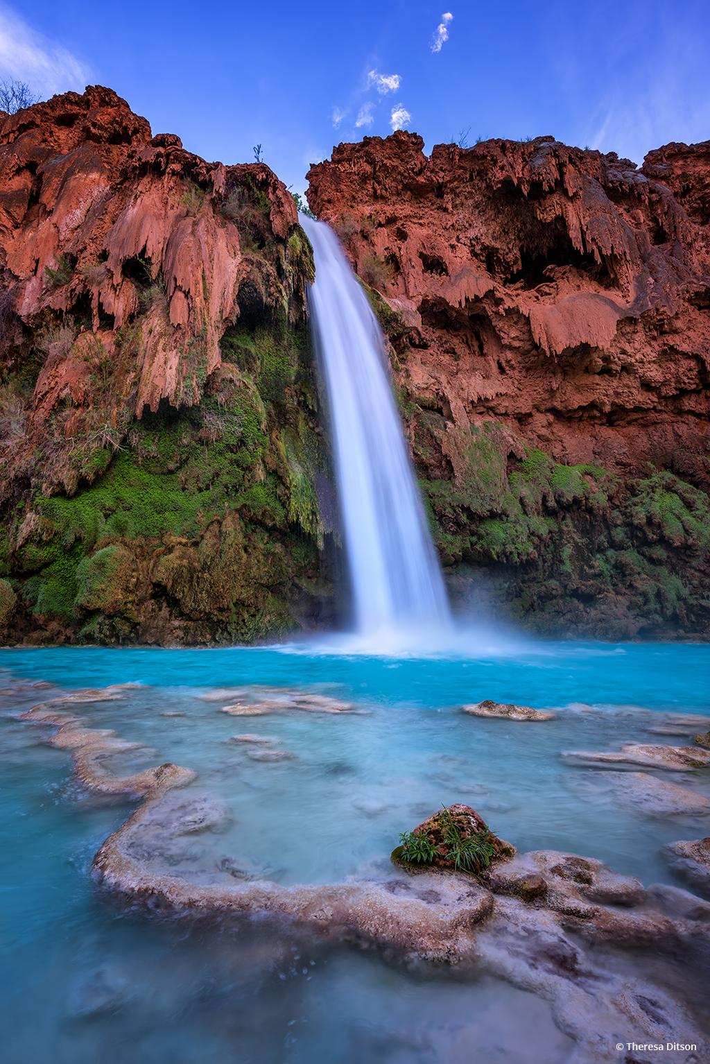 "Today's Photo Of The Day is ""Havasu Falls"" by Theresa Ditson. Location: Arizona."