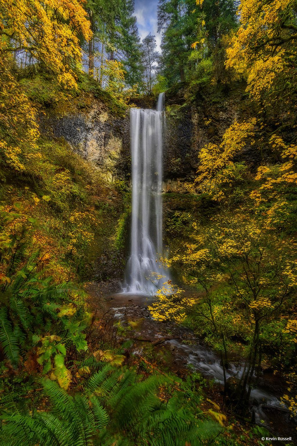 """Today's Photo Of The Day is """"Double Falls"""" by Kevin Russell. Location: Silver Falls State Park, Oregon. See more of Kevin Russell's photography at www.krbackwoodsphotography.com."""