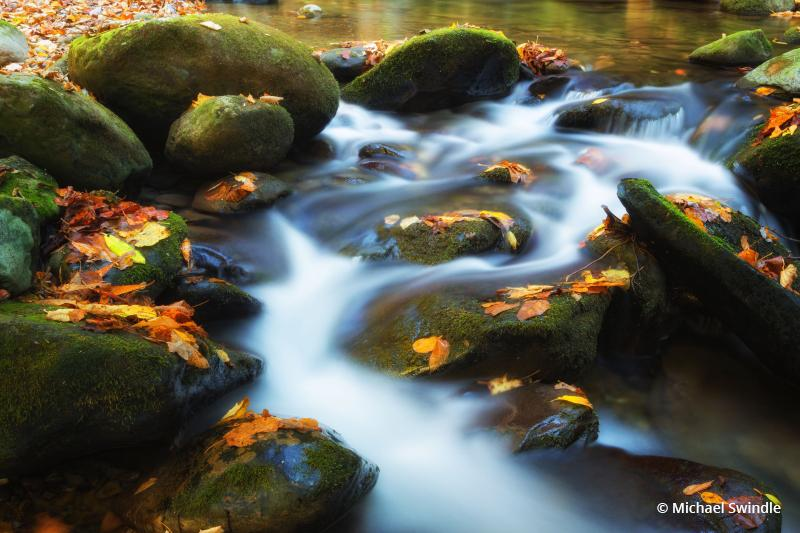 """Today's Photo Of The Day is """"Stream In Autumn"""" by Michael Swindle. Great Smoky Mountain National Park, TN."""