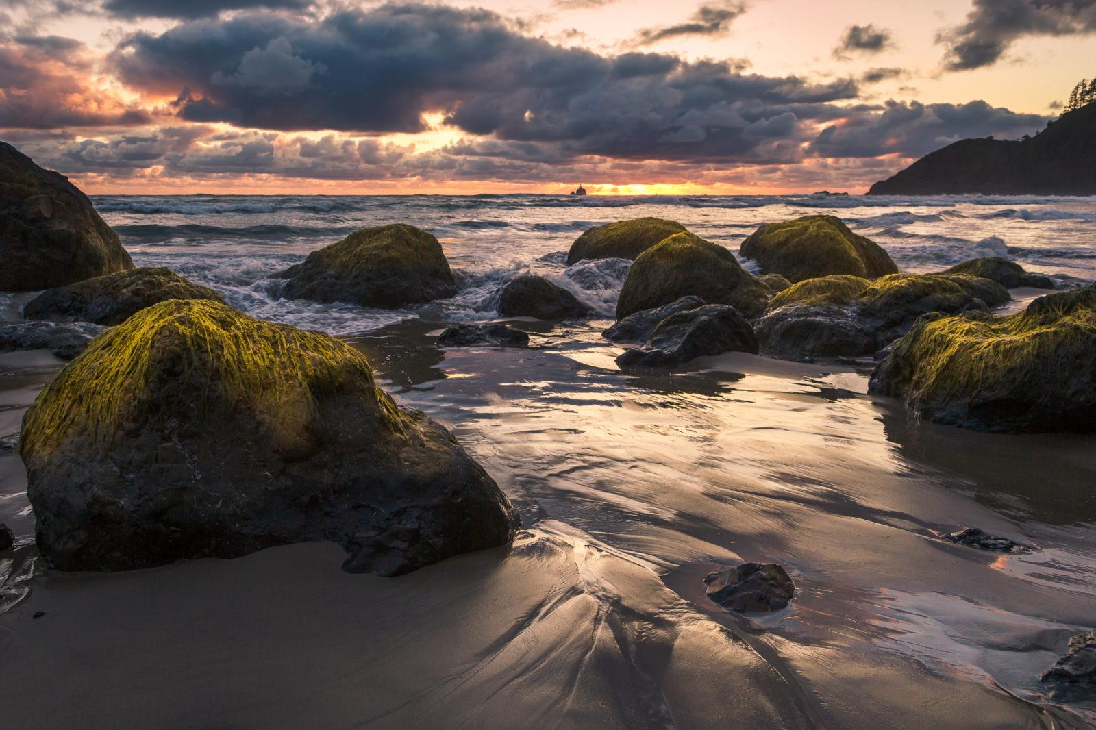 """Today's Photo Of The Day is """"Ecola State Beach"""" by Nadeen Flynn. Location: Ecola State Beach, Oregon."""