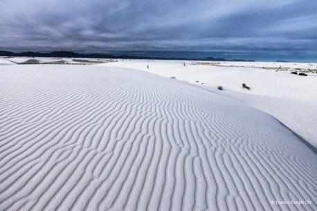 "Today's Photo Of The Day is ""Dreaming of White Sands"" by Eunice Eunjin Oh. Location: Chihuahuan Desert, New Mexico."