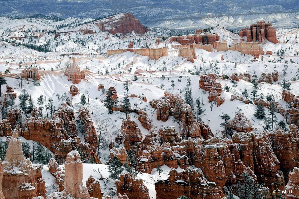 """Today's Photo Of The Day is """"Bryce Canyon National Park"""" by Gosha L. Location: Utah."""