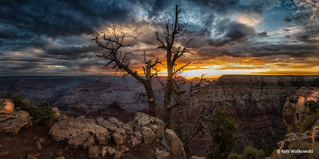 """Today's Photo Of The Day is """"'Mather' Nature"""" by by Kris Walkowski. Location: Mather Point, Grand Canyon National Park, Arizona."""