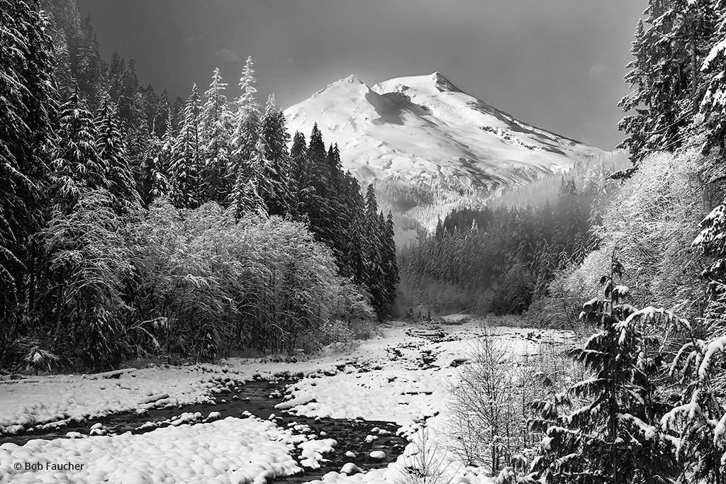 """Today's Photo Of The Day is """"The Snow King"""" by Bob Faucher. Location: Mt. Baker-Snoqualmie National Forest, Washington."""