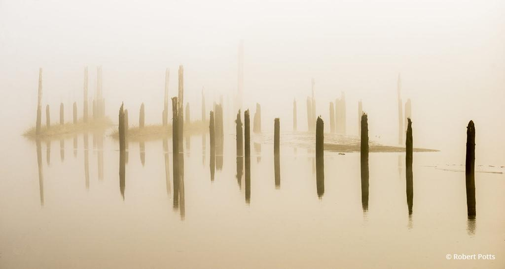 """Today's Photo Of The Day is """"Pilings in the Fog"""" by Robert Potts. Location: Lewis and Clark National Historical Park, Astoria, Oregon."""