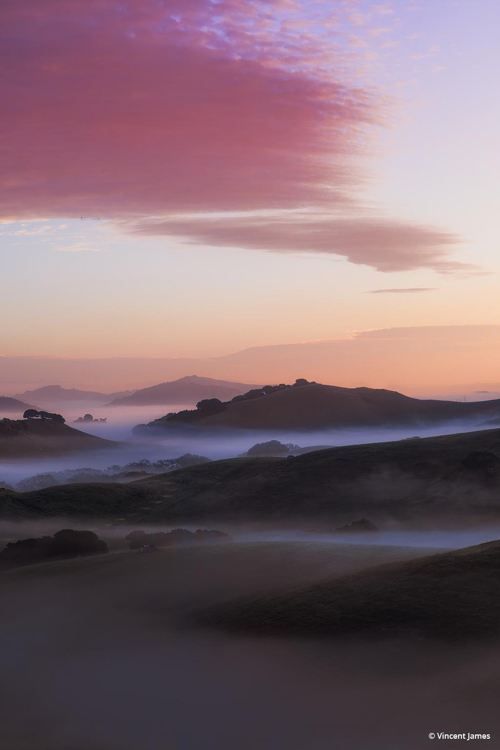 """Today's Photo Of The Day is """"Today's Photo Of The Day is """"Fog Swept"""" by Vincent James. Location: Petaluma Hills, Sonoma County, California."""