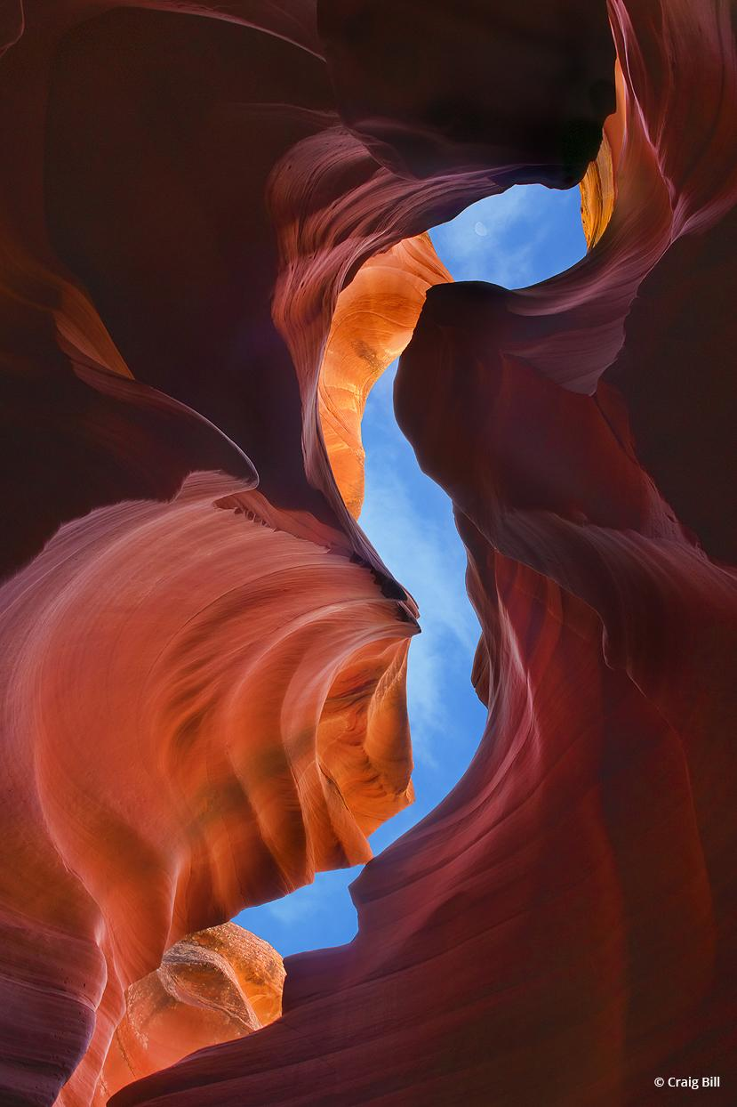 """Today's Photo Of The Day is """"Earthly Embrace"""" by Craig Bill."""
