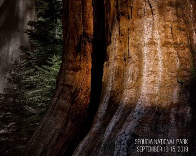 National Park Photography Expeditions