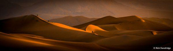"""Today's Photo Of The Day is """"Desert Light"""" by Rick Dandridge. Location: Stovepipe Wells, Death Valley National Park, California."""