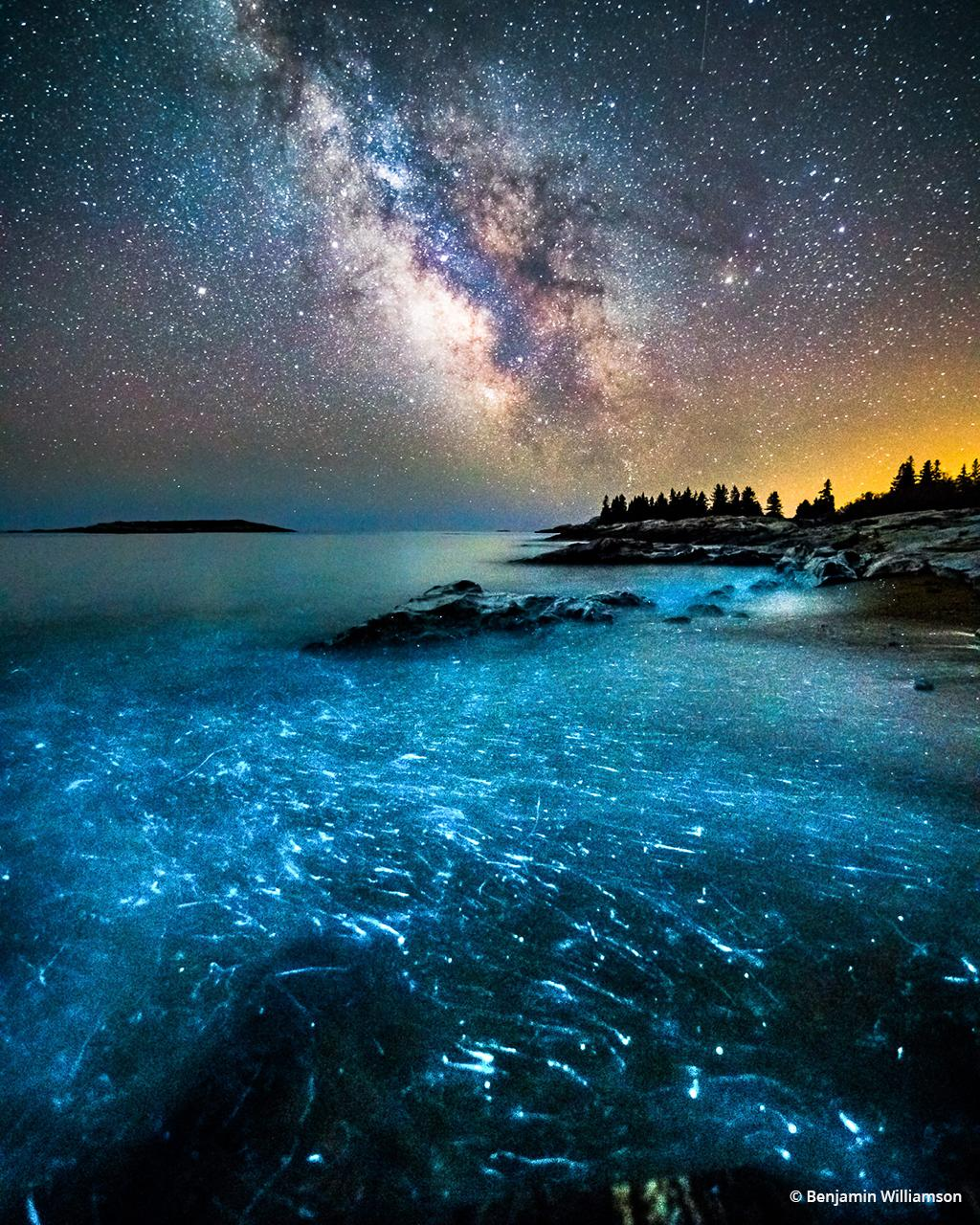 """Today's Photo Of The Day is """"Bioluminescence"""" by Benjamin Williamson. Location: Georgetown, Maine."""
