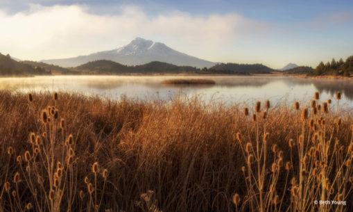 "Today's Photo Of The Day is ""Shasta Cascade Morning Light"" by Beth Young."