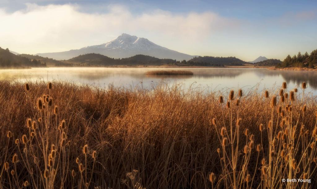 """Today's Photo Of The Day is """"Shasta Cascade Morning Light"""" by Beth Young."""