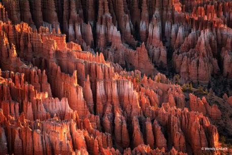 "Today's Photo Of The Day is ""The Destination"" by Wendy Gedack. Location: Bryce Canyon National Park, Utah."