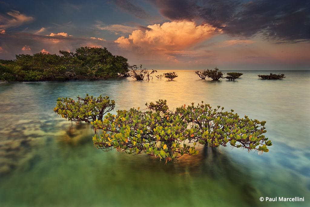Florida Photo Hot Spots: Biscayne National Park