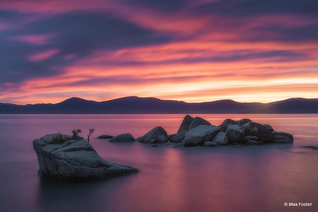 """Today's Photo Of The Day is """"Bonsai Rock Blaze"""" by Max Foster. Location: Lake Tahoe, California."""