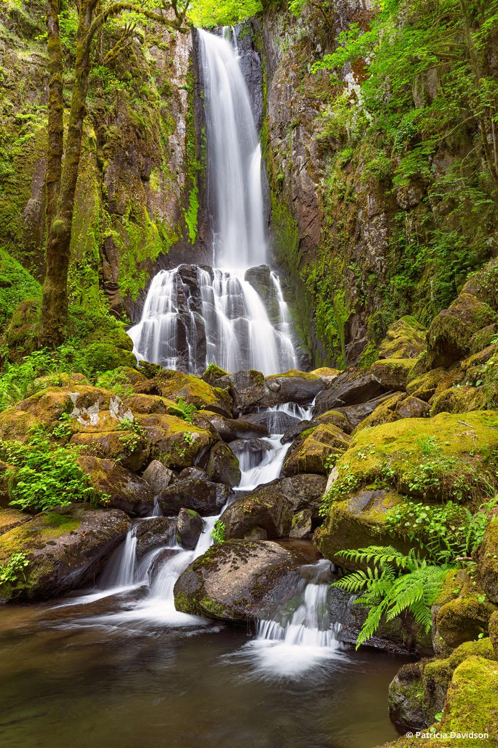 """Today's Photo Of The Day is """"Lower Kentucky Falls"""" by Patricia Davidson. Location: Oregon."""