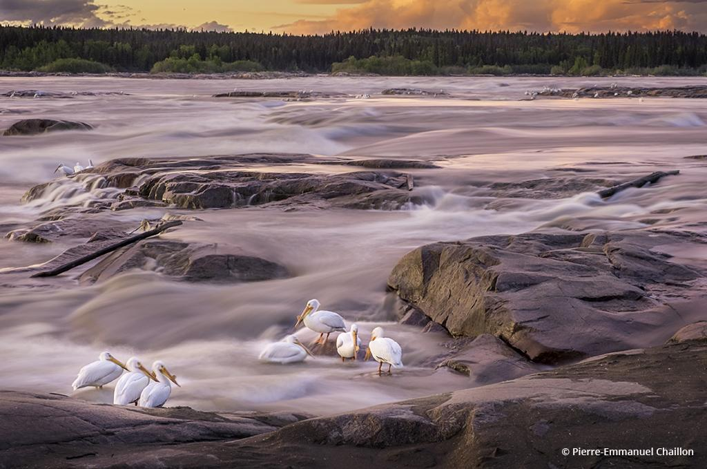 """Today's Photo Of The Day is """"Still at Dusk"""" by Pierre-Emmanuel Chaillon. Location: Fort Smith, Northwest Territories."""