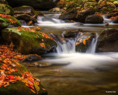 "Today's Photo Of The Day is ""Going with the Flow"" by James Day."