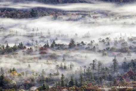Favorite Fall Color Photo Locations: Blue Ridge Parkway
