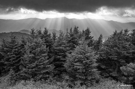 "Today's Photo Of The Day is ""Breaking Light"" by Joshua Moore. Location: Mount Mitchell State Park, North Carolina."