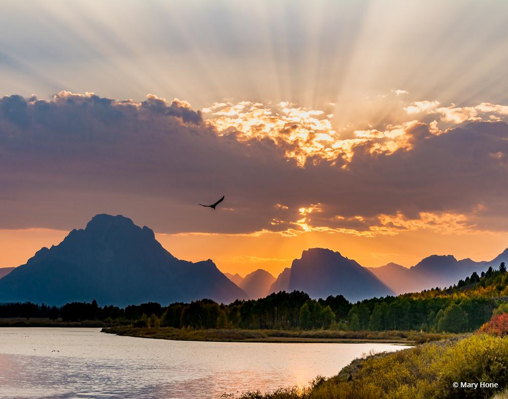 "Today's Photo Of The Day is ""Oxbow Bend at Sunset"" by Mary Hone. Location: Grand Teton National Park, Wyoming."