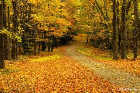 Fall Color Photo Tips: Burgess Cemetery in Grafton, Vermont