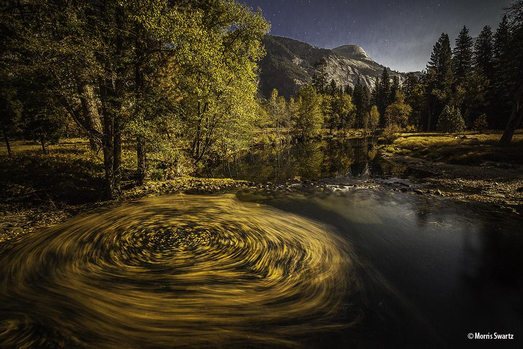 Leaves By Moonlight, Yosemite National Park, California