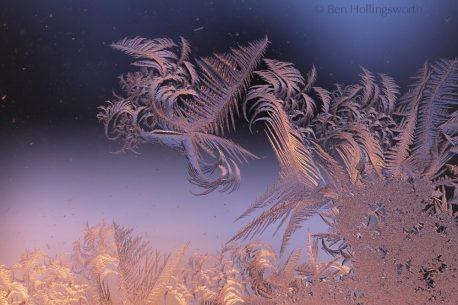"Today's Photo Of The Day is ""Pegasus in Frost Over Flames 5374"" by Ben Hollingsworth."