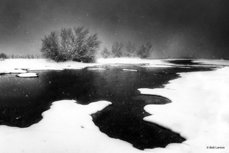 "Today's Photo Of The Day is ""Snoasis"" by Bob Larson. Location: Arizona."