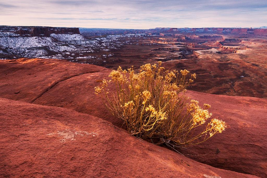 Photographing Desert Landscapes in Winter