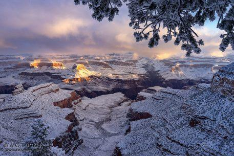 "Today's Photo Of The Day is ""Canyon First Light Of 2019"" by Archie Tucker. Location: Grand Canyon National Park, Arizona."