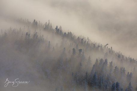 "Today's Photo Of The Day is ""Ghosts of the Ridge"" by Gary Sherman. Location: Franconia Notch, New Hampshire."