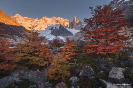 """Today's Photo Of The Day is """"Fall in the Foothills of Patagonia"""" by Lurie Belegurschi. Location: Monte Fitz Roy, Patagonia."""