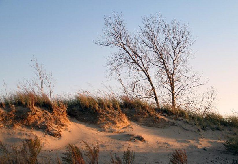 Indiana Dunes Is The Newest National Park