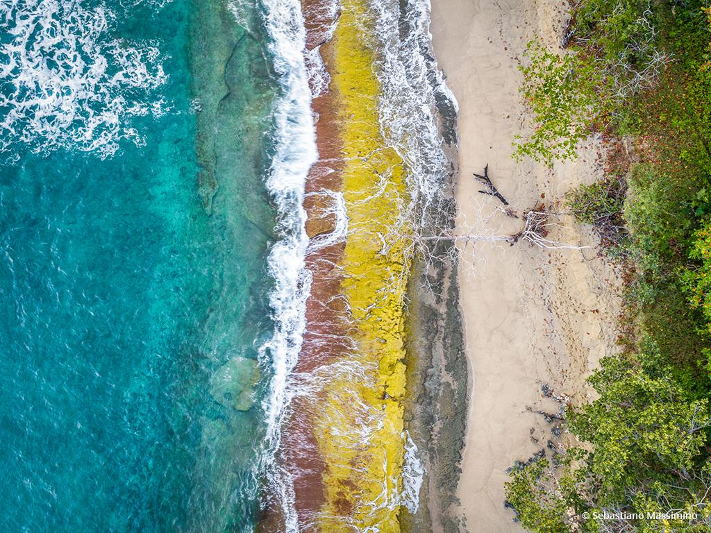 "Today's Photo Of The Day is ""Costa Colore"" by Sebastiano Massimino. Location: Dominican Republic."