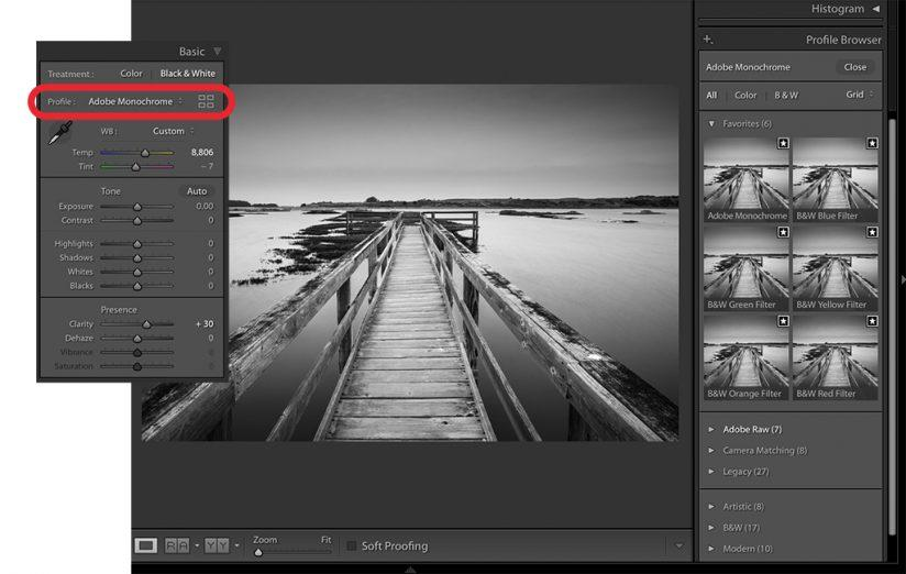 lightroom classic black-and-white controls in the Basic panel
